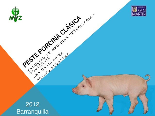 2012Barranquilla