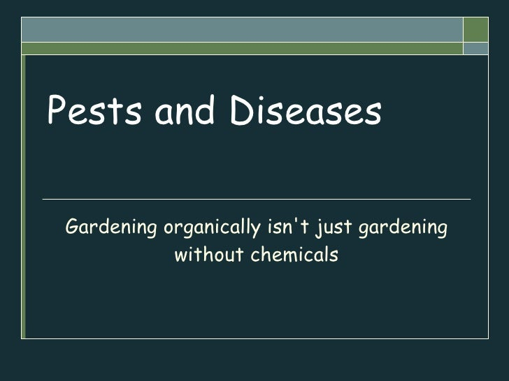 Pests and Diseases Gardening organically isn't just gardening without chemicals