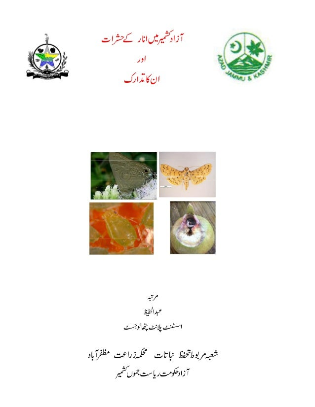 Pests of pomegranates in ajk by ahm