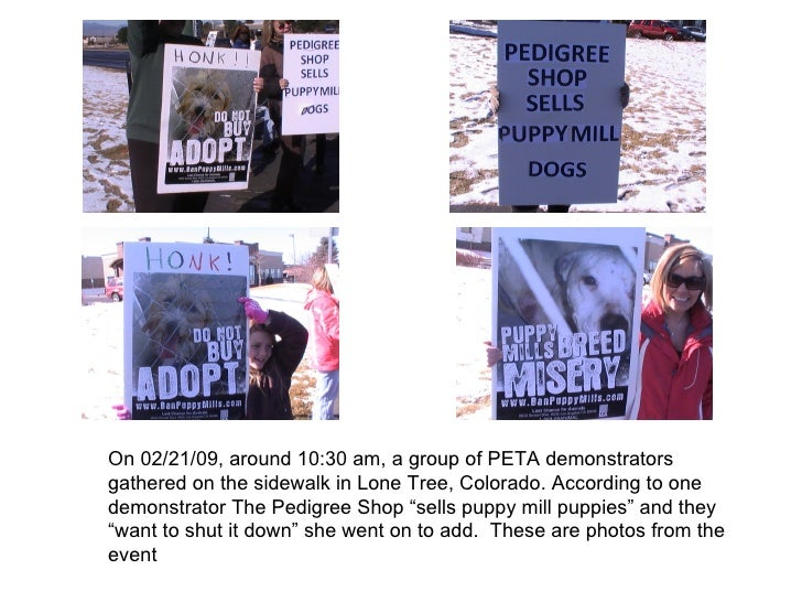 On 02/21/09, around 10:30 am, a group of PETA demonstrators gathered on the sidewalk in Lone Tree, Colorado. According to ...