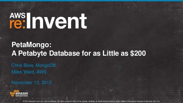 PetaMongo: A Petabyte Database for as Little as $200