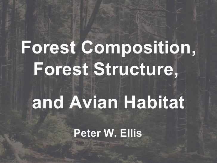 Forest Composition, Forest Structure,  and Avian Habitat Peter W. Ellis