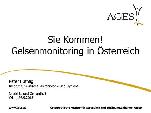 Österreichische Agentur für Gesundheit und Ernährungssicherheit GmbHwww.ages.at Sie Kommen! Gelsenmonitoring in Österreich...