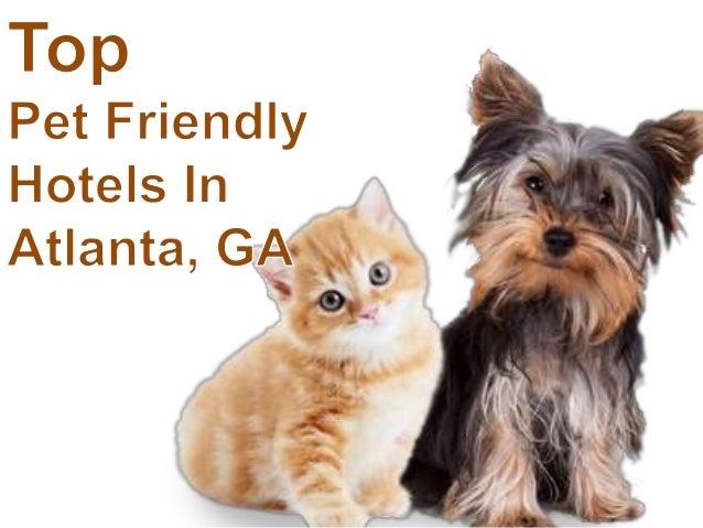 Pet Friendly Hotels in Atlanta, Georgia | TripsWithPets.com