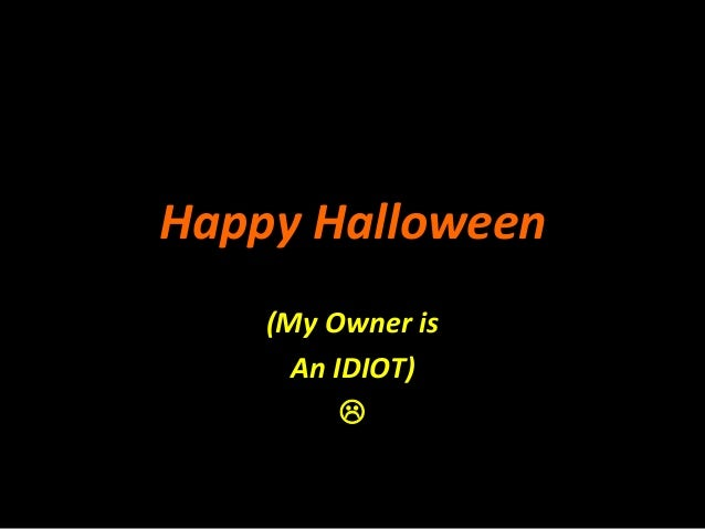 Happy Halloween (My Owner is An IDIOT) 
