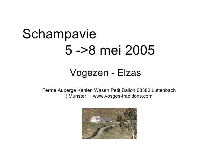 Elzas 2005 05 05->08