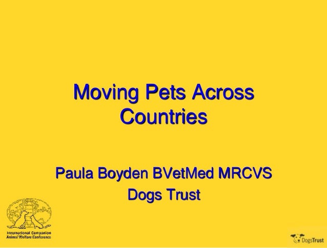 Moving Pets Across Countries Paula Boyden BVetMed MRCVS Dogs Trust