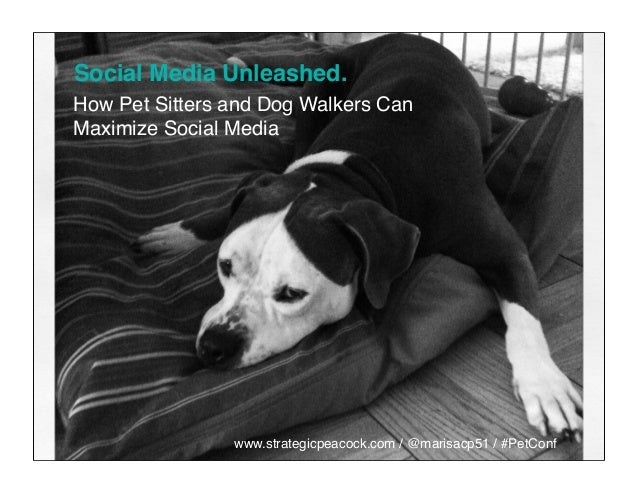 Social Media Unleashed. How Pet Sitters and Dog Walkers Can Maximize Social Media www.strategicpeacock.com / @marisacp51 /...
