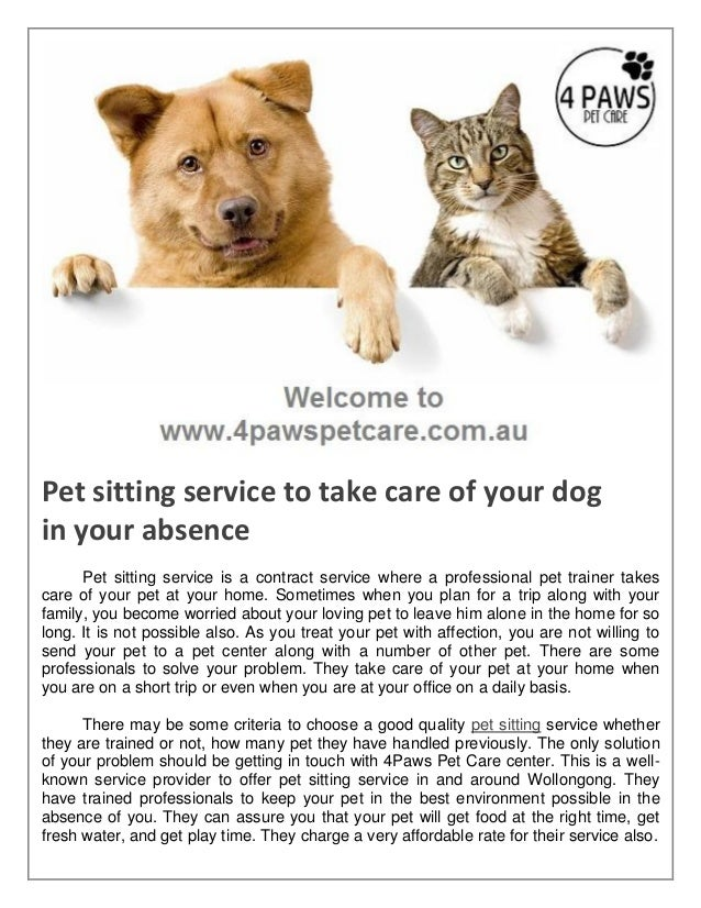 pet sitting service to take care of your dog