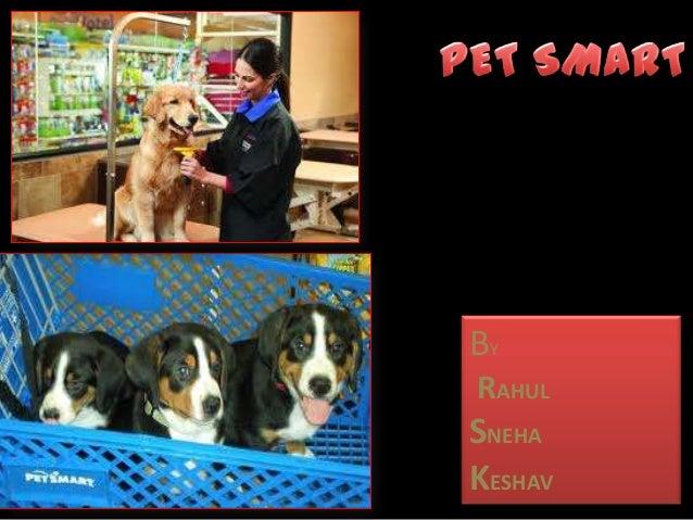 Petsmart ppt in rms by rahul ,sneha, keshav