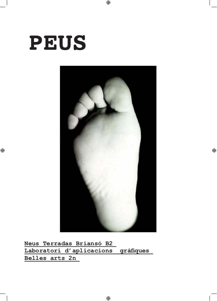 PEUSNeus Terradas Briansó B2Laboratori d'aplicacions   gràfiquesBelles arts 2n