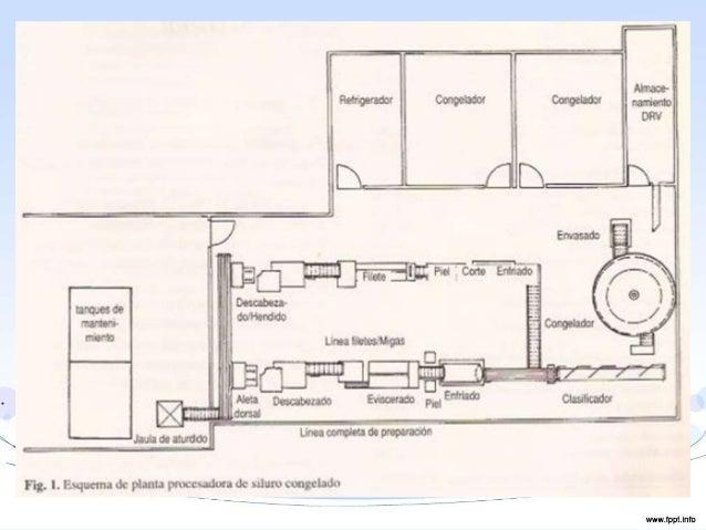 Planta procesadora de pescado for Planos de obra civil