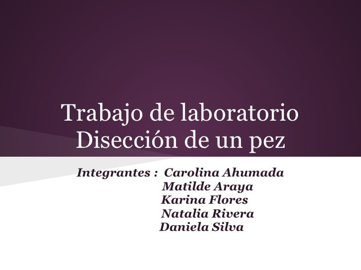 Trabajo de laboratorio Disección de un pez Integrantes : Carolina Ahumada               Matilde Araya               Karina...