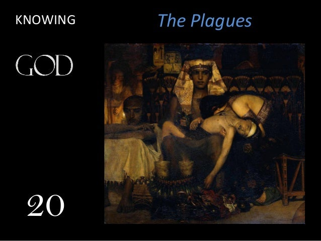 The PlaguesKNOWING 20