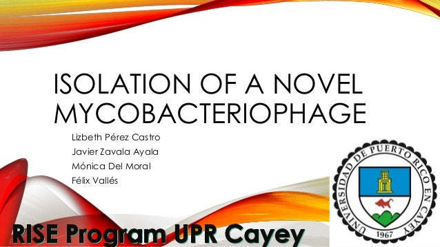 Phage presentation- The Isolation and Characterization of Mycobacteriophage Musamodel from Tropical Soils of Puerto Rico- spring 2014