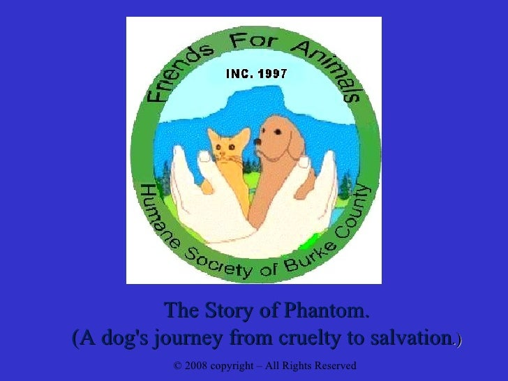 The Story of Phantom. (A dog's journey from cruelty to salvation .) © 2008 copyright – All Rights Reserved