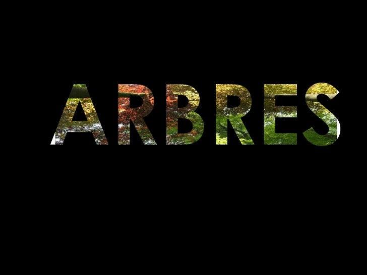 ARBRES<br />