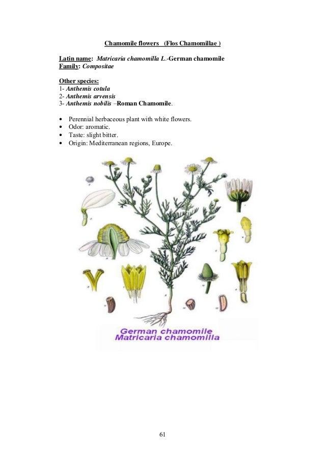 Pharmacognosy laboratory manual.pdf