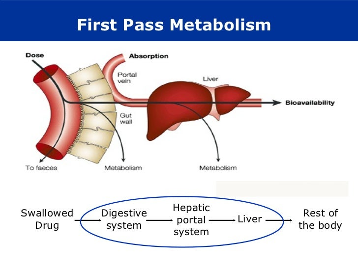 first pass metabolism Drug metabolism is the metabolic breakdown of drugs by living organisms  it becomes well-metabolized and is said to show the first pass effect.