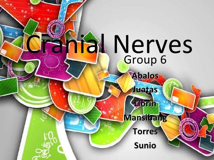 Cranial Nerves Group 6 Abalos Juatas Llorin Mansibang Torres Sunio