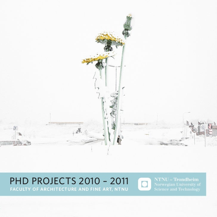 phd projects 2010 – 2011Faculty oF architecture and Fine art, ntnu