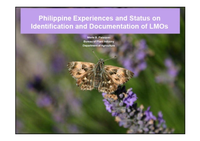 Philippine Experiences & Status on Identification & Documentation of LMO