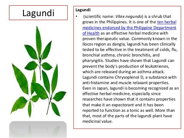 advantages of herbal medicine pdf