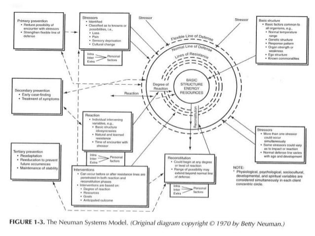 levine s conservation model theory case study Theory evaluation: roy utilizing a case study demonstrates application of roy's adaptation theory to nursing practice (roy's adaptation model, 2012) the roy adaptation model, with a sturdy knowledge structure.