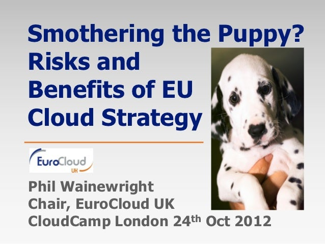 Smothering the Puppy?Risks andBenefits of EUCloud StrategyPhil WainewrightChair, EuroCloud UKCloudCamp London 24th Oct 2012