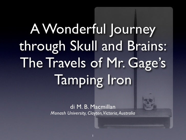 A Wonderful Journey through Skull and Brains: The Travels of Mr. Gage's      Tamping Iron                di M. B. Macmilla...