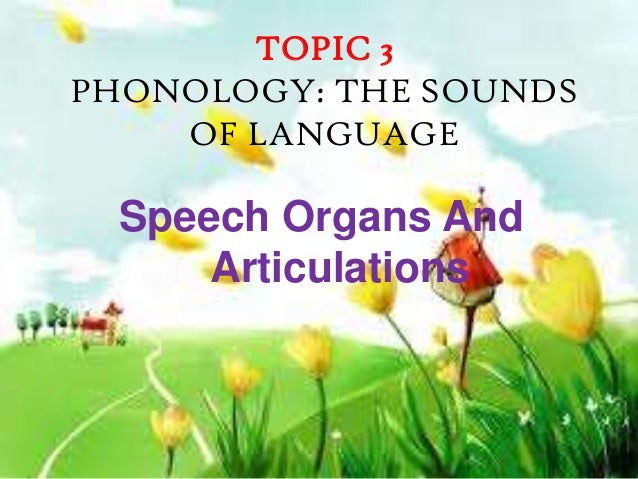TOPIC 3PHONOLOGY: THE SOUNDS    OF LANGUAGE  Speech Organs And      Articulations