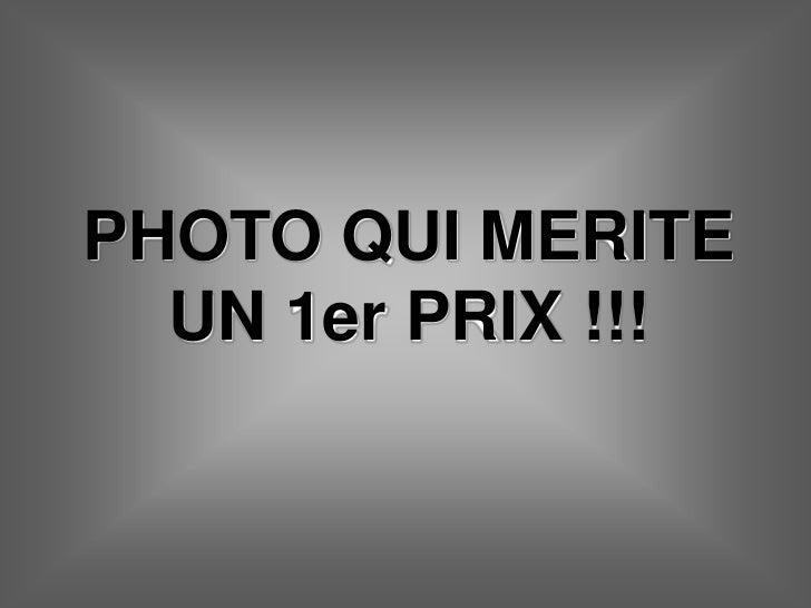 PHOTO QUI MERITE  UN 1er PRIX !!!