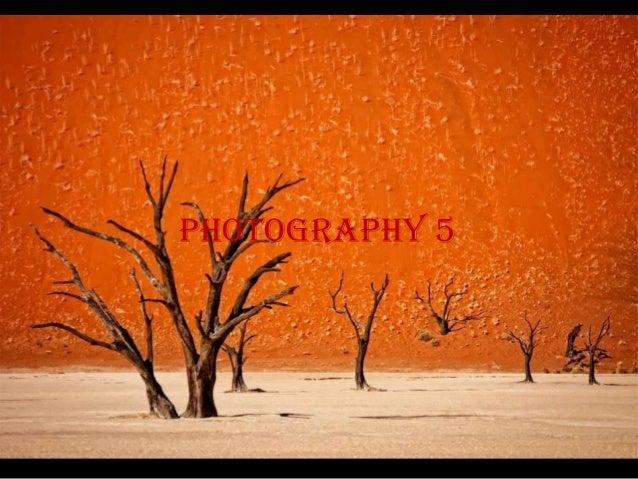 photography 5