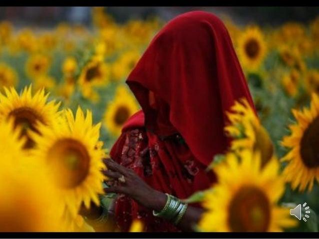 Photography By Rajesh Kumar Singh