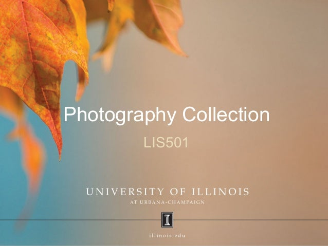 Photography Collection LIS501