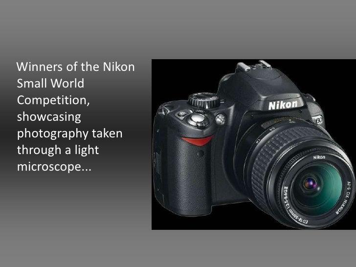Photography Taken Through A Light Microscope