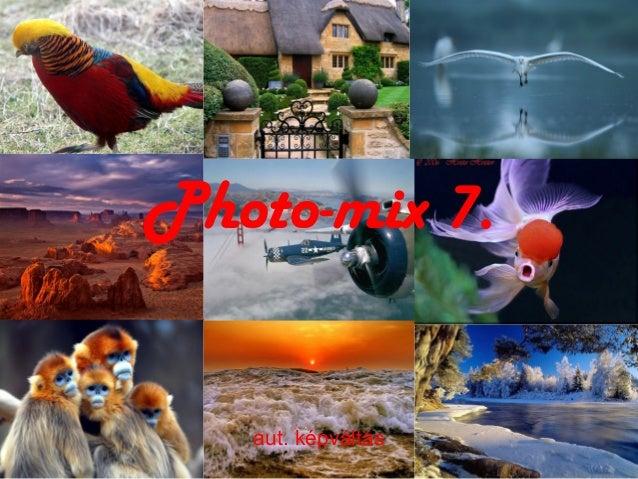 Photo mix7