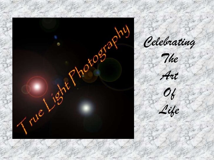 Celebrating    The    Art     Of    Life