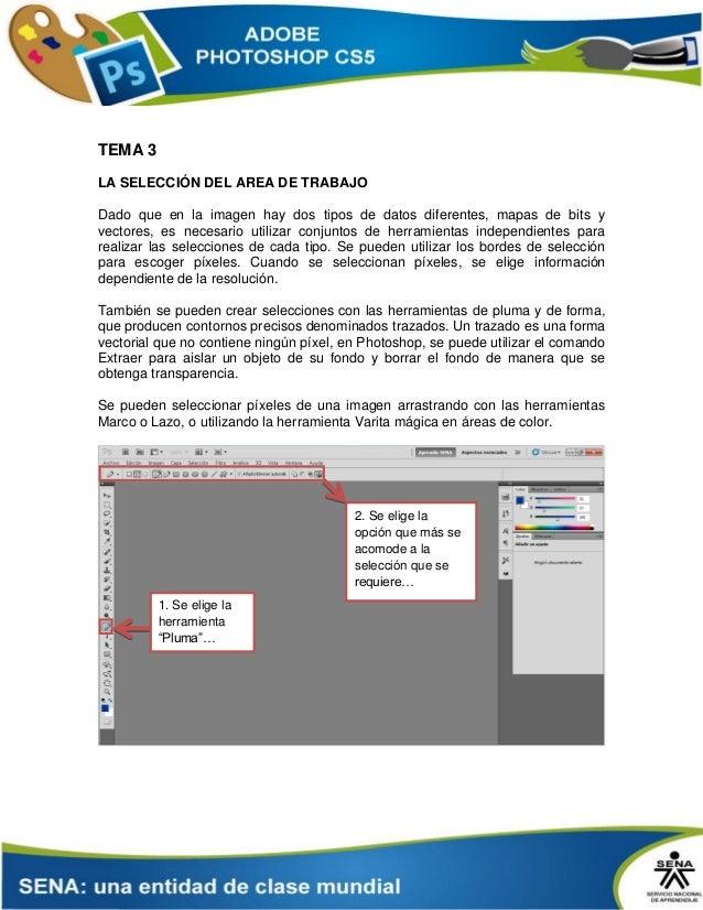TEMA 3 LA SELECCIÓN DEL AREA DE TRABAJO Dado que en la imagen hay dos tipos de datos diferentes, mapas de bits y vectores,...