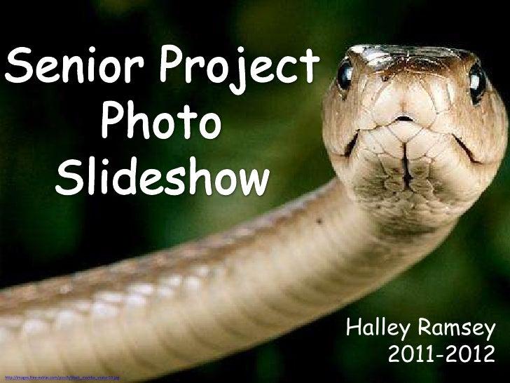 Photo Slideshow