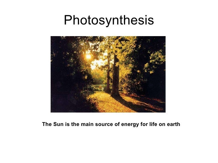 Photosynthesis The Sun is the main source of energy for life on earth