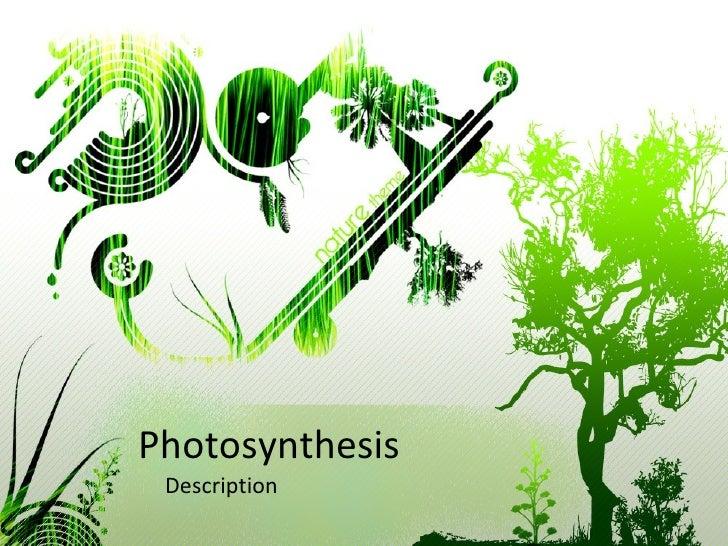 Photosynthesis Description