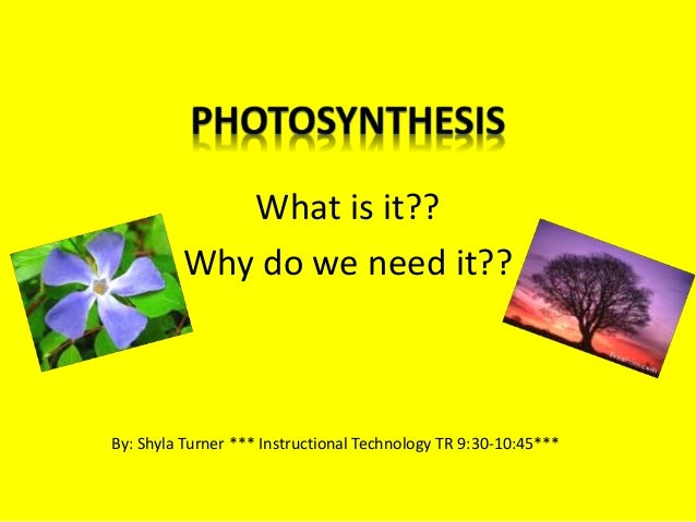 What is it?? Why do we need it?? By: Shyla Turner *** Instructional Technology TR 9:30-10:45***