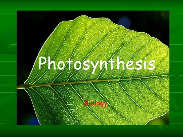 Photosynthesis Biology