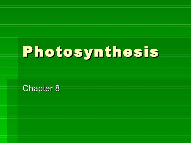 PD 2 Photosynthesis Notes