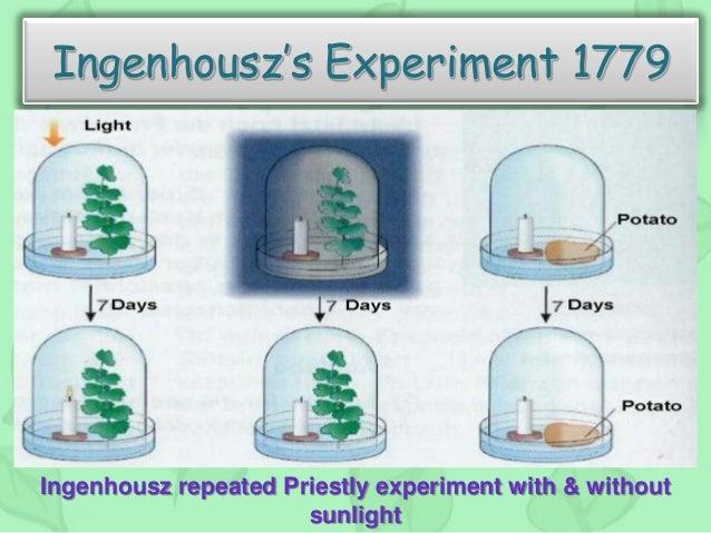Jan Ingenhousz Photosynthesis Experiment >> Photosynthesis