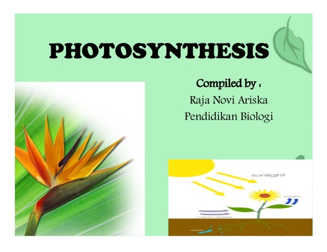 carbon dioxide sunlight oxygenREACTANT FROM AIR TO AIR OR USED FOR RESPIRATION PRODUCT 1. Definition of Photosynthesis Pho...