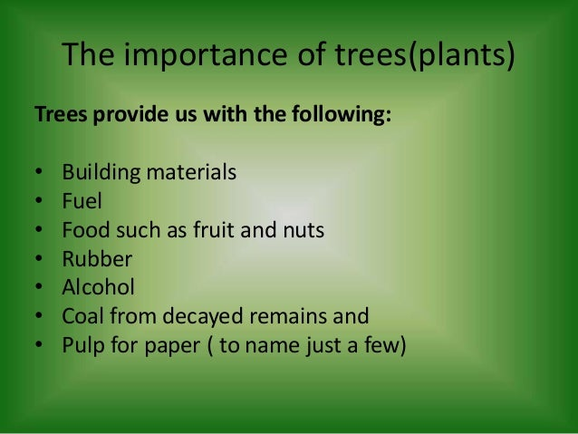 importance and value of trees Information on the cultural significance of forest resources can be of traditional values ascribed to forest resources importance of trees in.