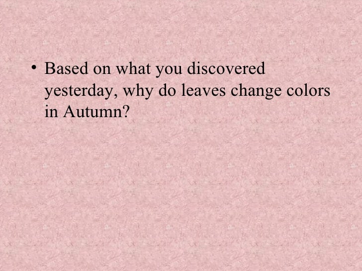 <ul><li>Based on what you discovered yesterday, why do leaves change colors in Autumn? </li></ul>