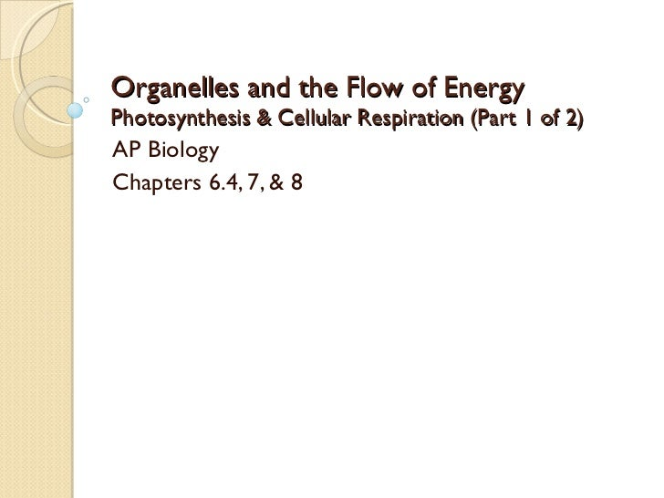 Organelles and the Flow of Energy Photosynthesis & Cellular Respiration (Part 1 of 2) AP Biology Chapters 6.4, 7, & 8